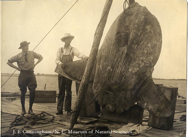 Two men pose with captured mola