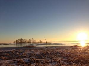 Frozen Lake Mattamuskeet at sunrise