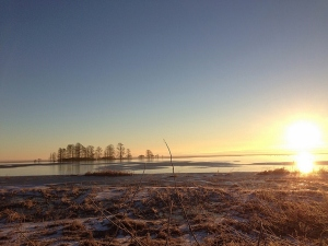 Frozen Lake Mattamuskeet at sunrise