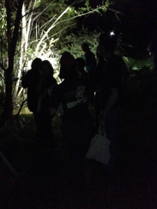 FrogWatch frog call survey after dark
