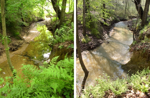 Stream before and after a storm