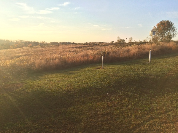 Golden hour at Prairie Ridge