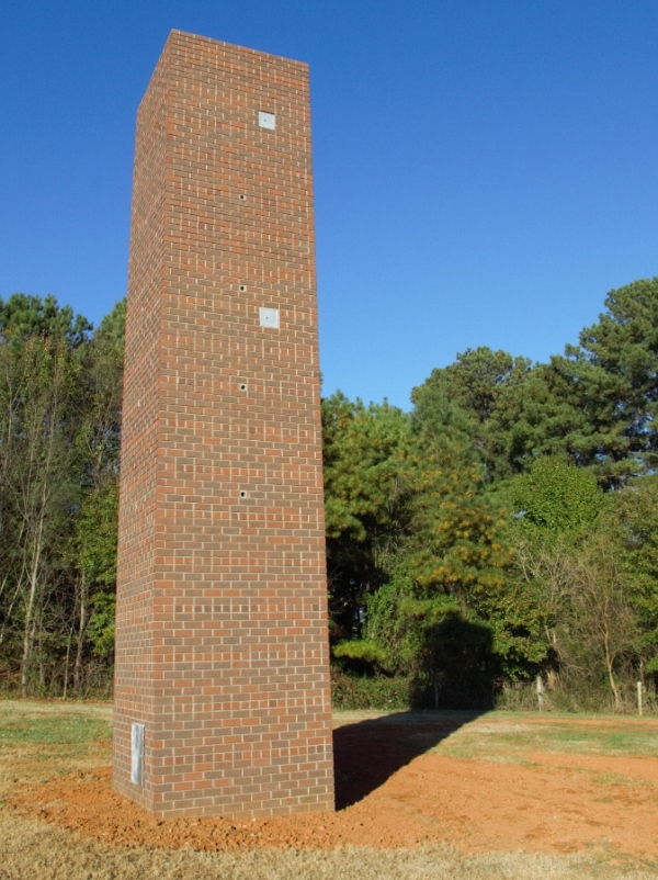 Chimney Swift Tower against forest