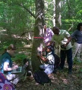 eMammal group in field