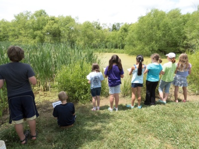 Dragonfly Detectives making observations at ponds