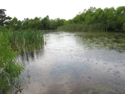 storm at Prairie Ridge pond