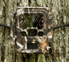 camera-trap