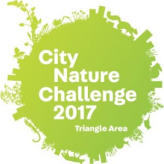 City NAture Challenge Triangle logo