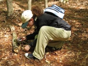 iNaturalist participant
